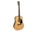 Braidwood Dreadnought Solid Top 04