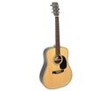 Braidwood Dreadnought Solid Top 05