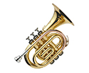 J.Michael Pocket Trumpet.Lacqr/Case