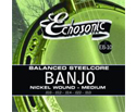 Echosonic Banjo Strings (10-22) EB10