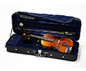 Raggetti RV5 Violin Outfit in Shaped Case-1/2