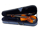 Raggetti RV2 Violin Outfit in Shaped Case-1/2